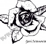 Design stamps and inscriptions-Rose