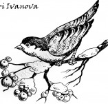 Design stamps and inscriptions-Birds