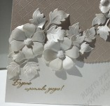 Wedding-Invitation and cards