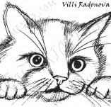 20/1026/Дизайнерски печати и надписи за картички-Деца-Сладко коте