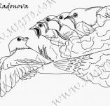 33/1027/Дизайнерски печати и надписи за картички-Птици-Майчина грижа