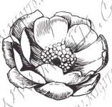 23/1095/Дизайнерски печати и надписи за картички-Цветя-Роза 2