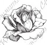 23/1097/Дизайнерски печати и надписи за картички-Цветя-Роза 4