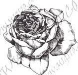 23/1098/Дизайнерски печати и надписи за картички-Цветя-Роза 5