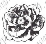 23/1100/Дизайнерски печати и надписи за картички-Цветя-Роза 7