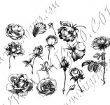 23/1102/Дизайнерски печати и надписи за картички-Цветя-Роза 9