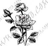 23/1104/Дизайнерски печати и надписи за картички-Цветя-Роза 11