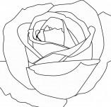 23/115/Дизайнерски печати и надписи за картички-Цветя-Печат на роза 4