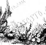101/1160/Дизайнерски печати и надписи за картички-Морски-Морско дъно
