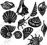 101/1161/Дизайнерски печати и надписи за картички-Морски-Сет с рапани