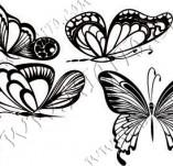 96/1163/Дизайнерски печати и надписи за картички-Пеперуди-Сет пеперуди 2