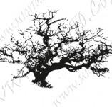22/1167/Дизайнерски печати и надписи за картички-Дървета-Печат на дърво 8