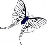 23/117/Дизайнерски печати и надписи за картички-Цветя-Печат на пеперудка
