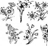 91/1233/Дизайнерски печати и надписи за картички-Направи си картина-Сет с цветя за рисуване на картичка 1