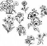 91/1234/Дизайнерски печати и надписи за картички-Направи си картина-Сет с цветя за рисуване на картичка 2