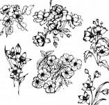 91/1235/Дизайнерски печати и надписи за картички-Направи си картина-Сет с цветя за рисуване на картичка 3