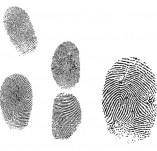 146/1468/Дизайнерски печати и надписи за картички-Микс медия печати-Печати на отпечатъци на пръсти