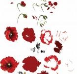 176/1775/Дизайнерски печати и надписи за картички-Многостъпкови печати-Многопластов печат на мак