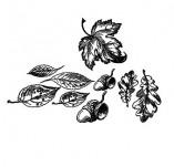 91/1792/Дизайнерски печати и надписи за картички-Направи си картина-Есенни листа сет