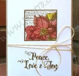 138/1823/Картички-Новогодишни картички-Новогодишна картичка с коледна звезда