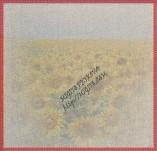17/2070/Хартии-Дизайнерски хартии-Дизайнерска хартия със слънчогледи и шевица  без състаряване