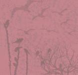 17/247/Хартии-Дизайнерски хартии-22