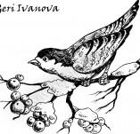 25/386/Дизайнерски печати и надписи за картички-Нова Година-Зима е 2