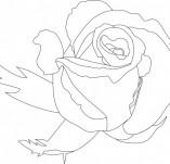 23/412/Дизайнерски печати и надписи за картички-Цветя-Печат на роза 6