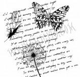 75/472/Дизайнерски печати и надписи за картички-Фонови печати-Печат на текст с пеперуда и перо