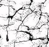75/474/Дизайнерски печати и надписи за картички-Фонови печати-Напукана земя печат