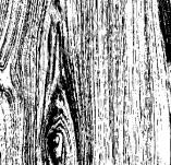 75/554/Дизайнерски печати и надписи за картички-Фонови печати-Печат на текстура на дърво 6