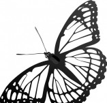 96/597/Дизайнерски печати и надписи за картички-Пеперуди-Печат на пеперудка 1