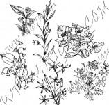 91/599/Дизайнерски печати и надписи за картички-Направи си картина-Малки цветя