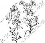 91/601/Дизайнерски печати и надписи за картички-Направи си картина-Полски цветя
