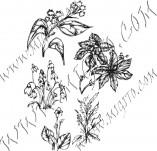 91/603/Дизайнерски печати и надписи за картички-Направи си картина-Пролетни цветя