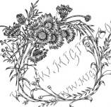 97/701/Дизайнерски печати и надписи за картички-Текстови бордъри-Текстови бордър 61