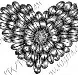 100/974/Дизайнерски печати и надписи за картички-Сърчица-Печат на сърце 24